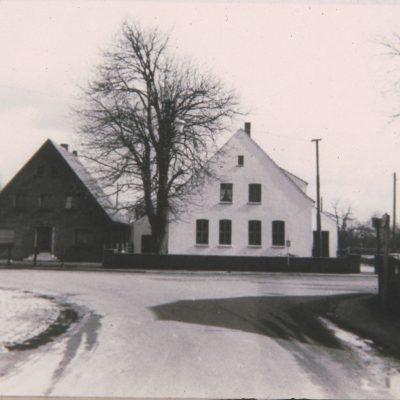 Die Kastanie von Erle. Rechts die Erler Schule 1959